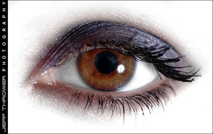 http://www.webthrower.com/claireweb/eye.jpg